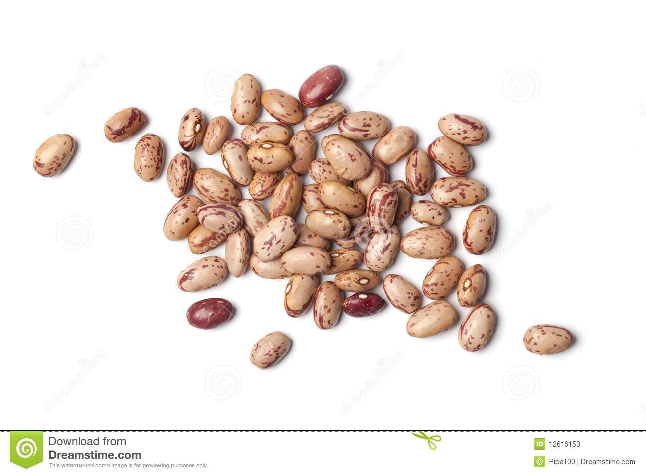 Pinto Beans Clipart.