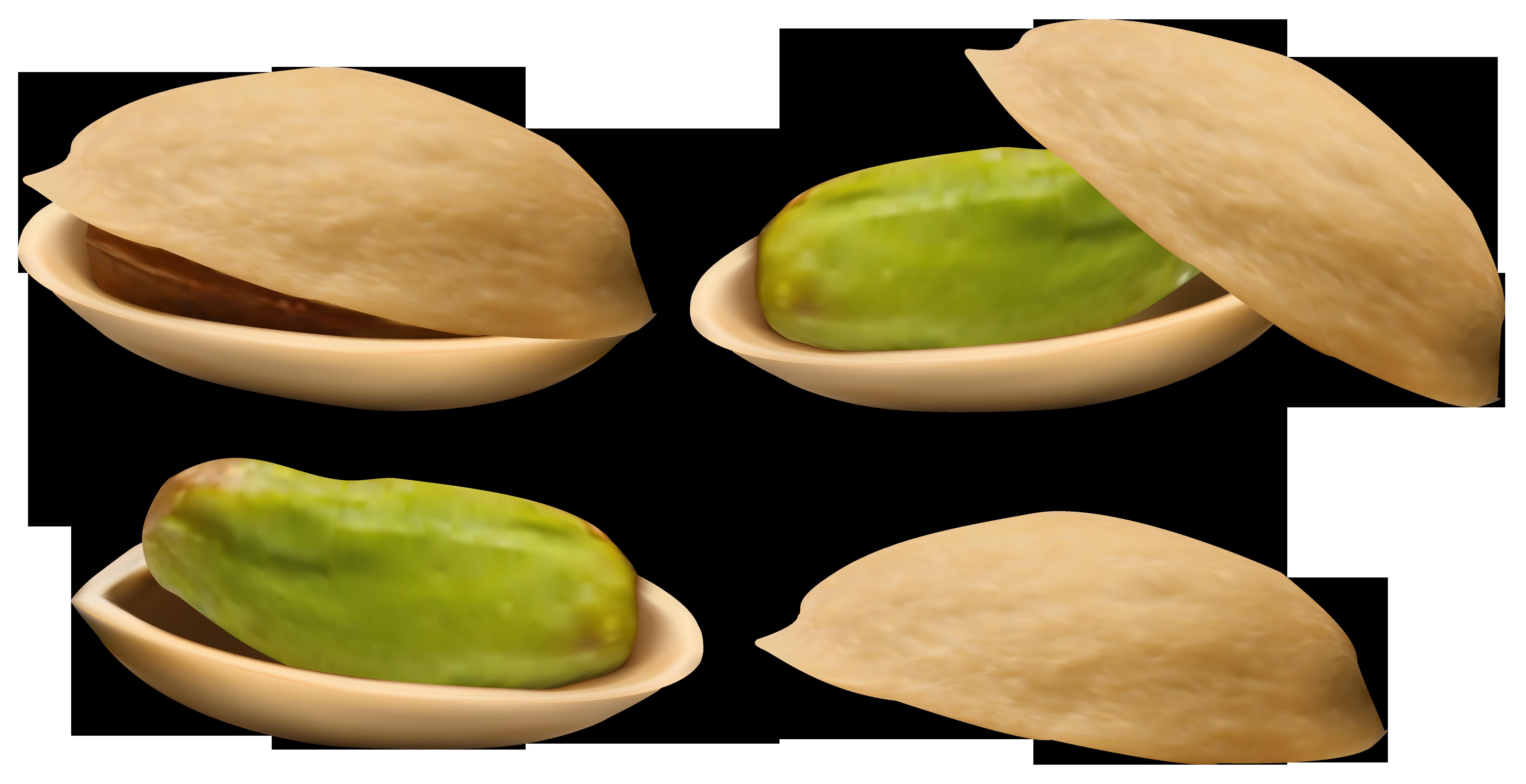 Pistachio PNG Clipart Image.