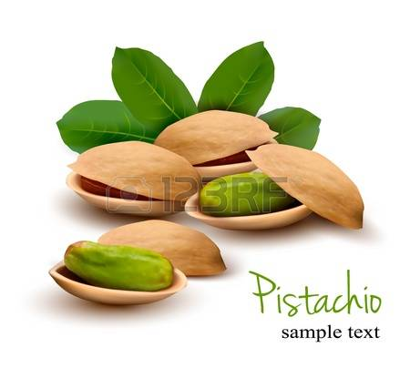 3,726 Pistachio Stock Illustrations, Cliparts And Royalty Free.
