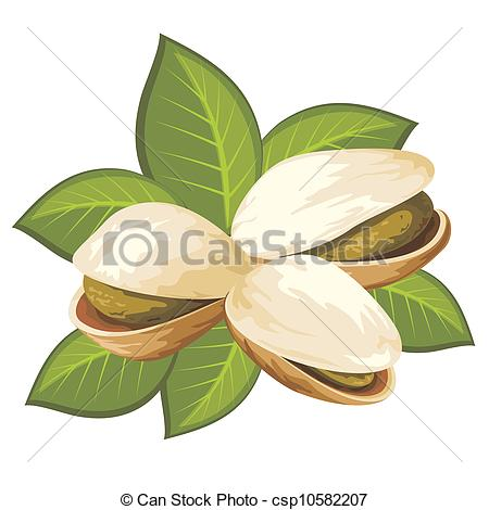 Pistachio Illustrations and Stock Art. 1,874 Pistachio.