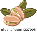 Clipart of a Sketched Pistachio.