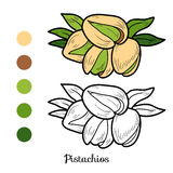 Pistachios Stock Illustrations.