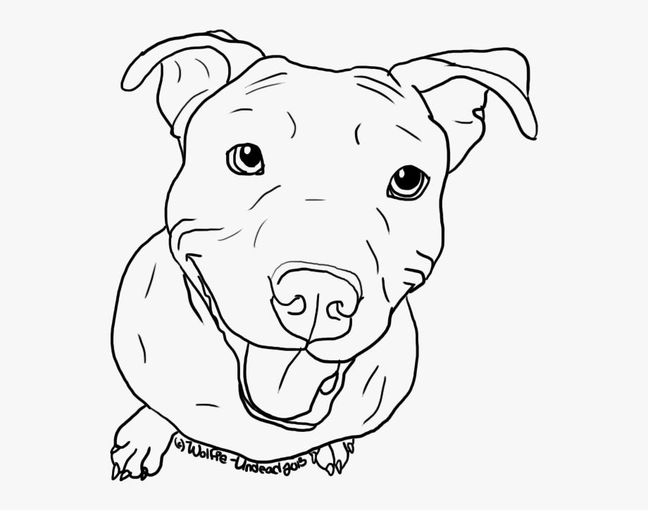 Clip Art Pitbull Drawings Images.