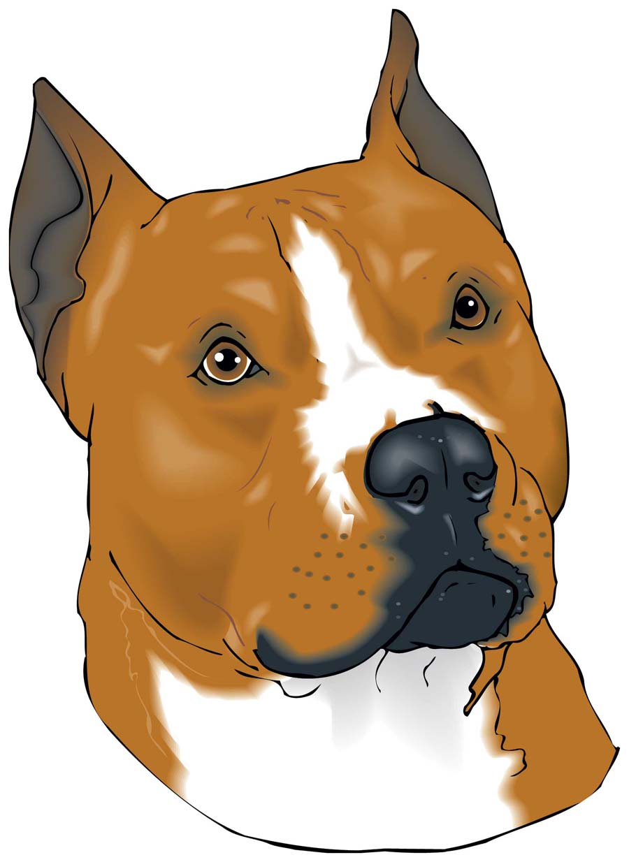 Pitbull Clipart 20 Free Cliparts Download Images On