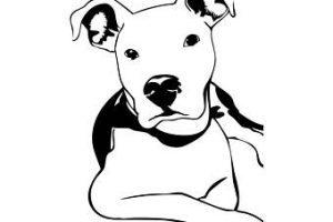 Pitbull clipart black and white 6 » Clipart Portal.