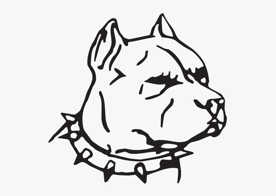 Face Pitbull Dog Drawing , Transparent Cartoon, Free.