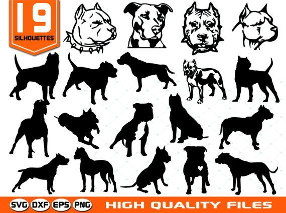 Pitbull silhouettes SVG.