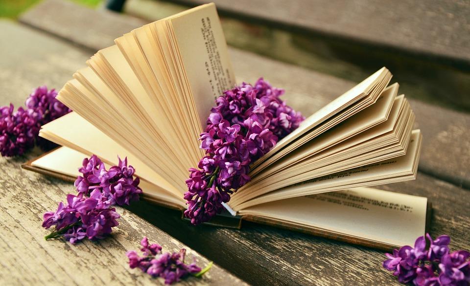 Open, Book.