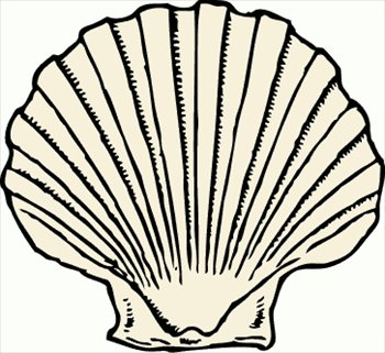 The shell clipart #16