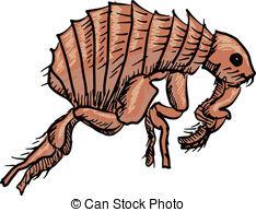 clipart of fleas #1