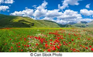 Stock Beelden van zomer, landscape, Italië, Umbria, Grande, piano.