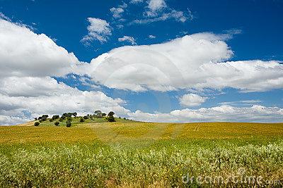 Plains Of Alentejo, Portugal Royalty Free Stock Image.