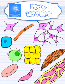 Plant and Animal Cell and tissues clipart {Science clip art.