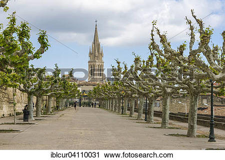 Stock Photography of Avenue of plane trees on Place Royale du.