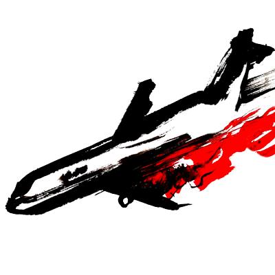 Plane Crash Videos (@planecrashvids).