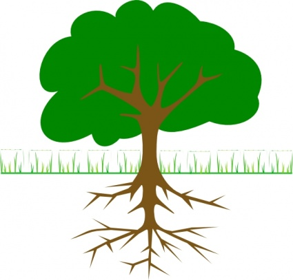 Tree Outline Vector.