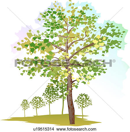 Plane tree Clipart Royalty Free. 1,590 plane tree clip art vector.