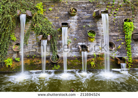 Planten Un Blomen Stock Images, Royalty.