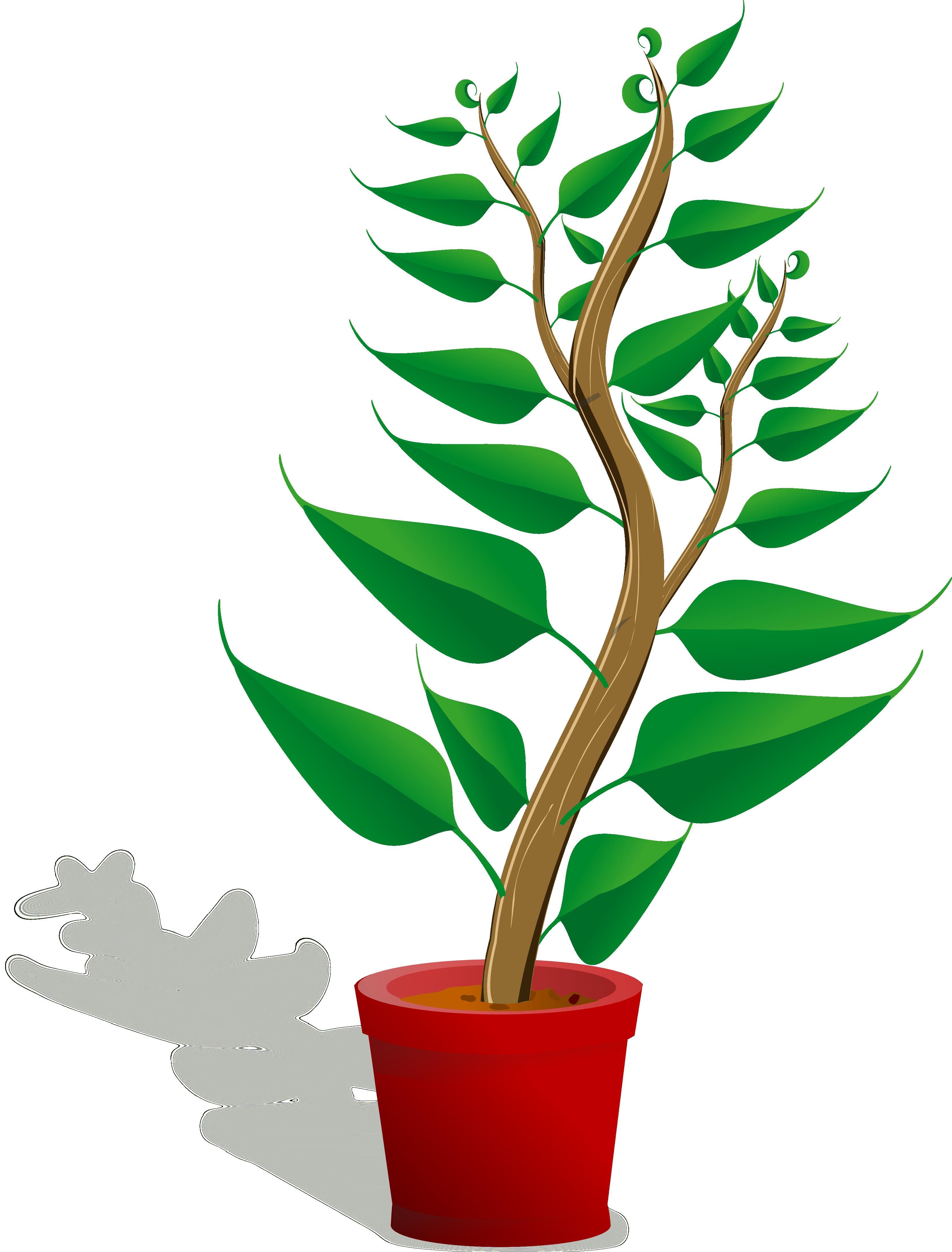 Plants clip art free clipart images.