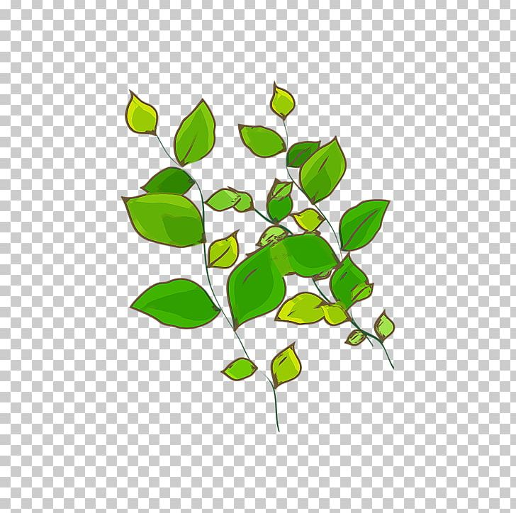 Green Leaf Plant Computer File PNG, Clipart, Background.