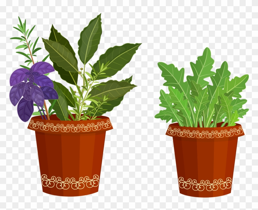 Potted Plants Clipart Happy Plant.
