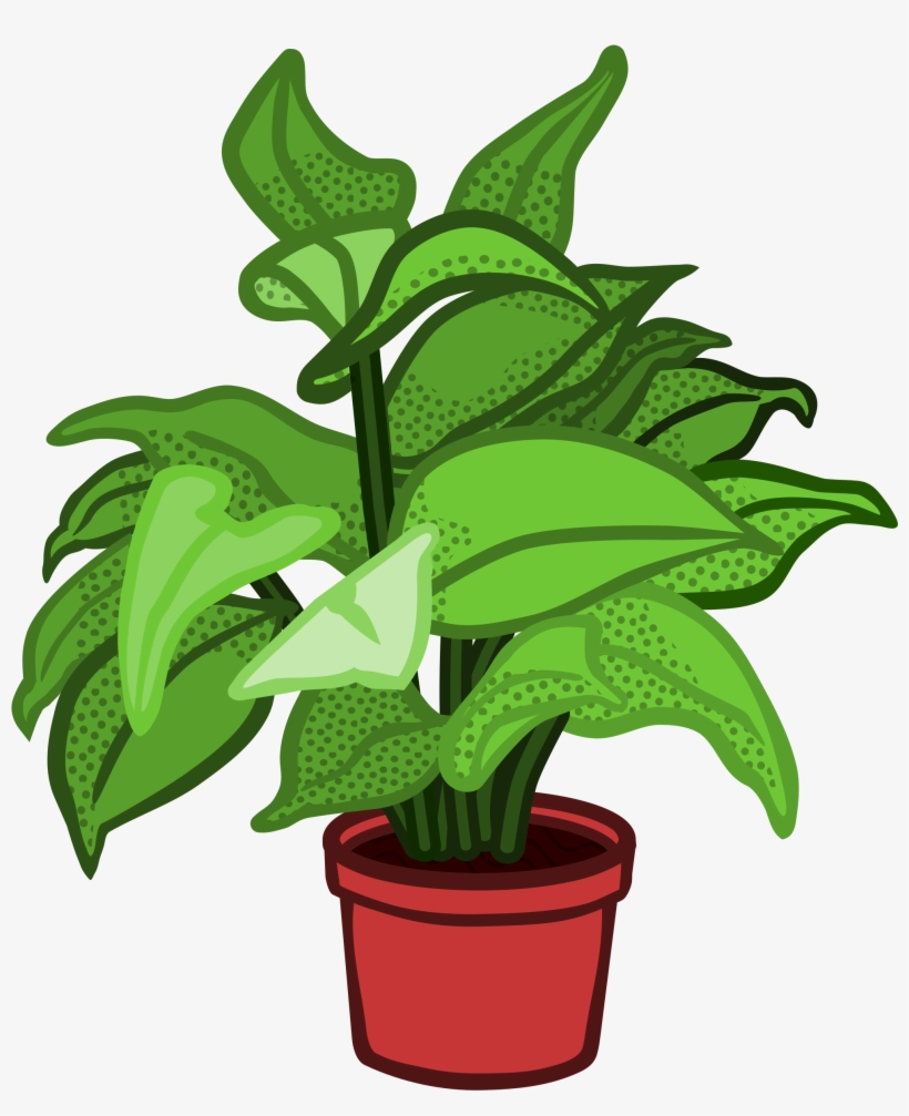 Image Free Stock Pot Plant Planted Flower Free On.