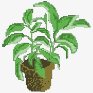 Aesthetic Clipart Plant.