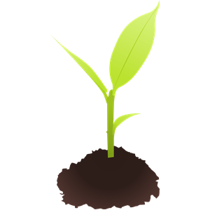Small plant clipart, cliparts of Small plant free download.