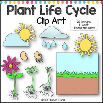 Life Cycle of Plants Clip Art.