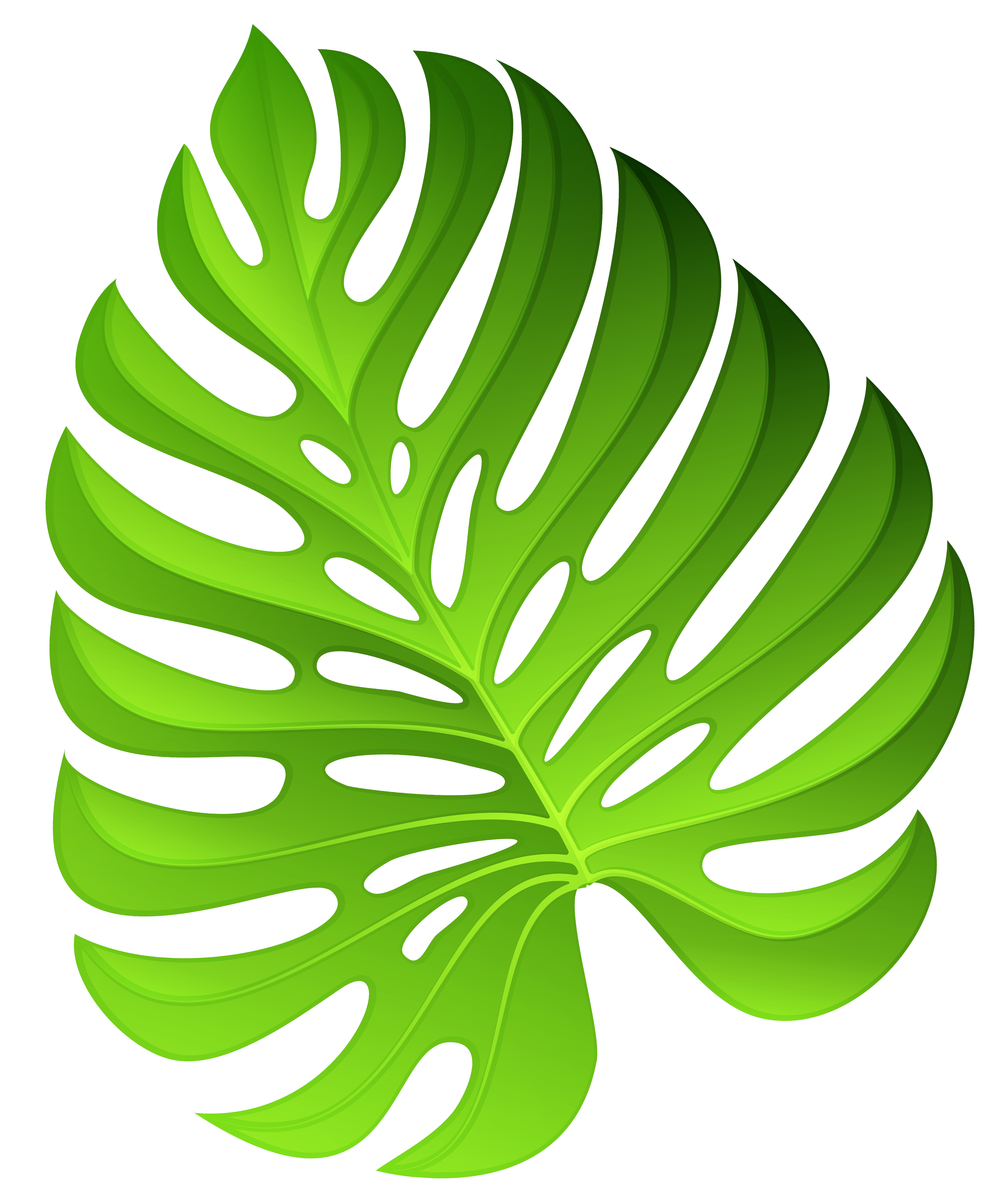 Exotic Green Plant Decoration PNG Clipart Image.