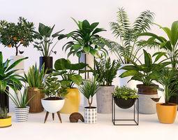 Plant 3D Models.