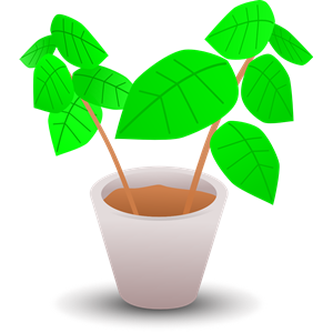 Plant in a pot 2 clipart, cliparts of Plant in a pot 2 free.