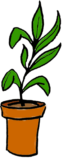 Plant in a pot clipart clipart images gallery for free.