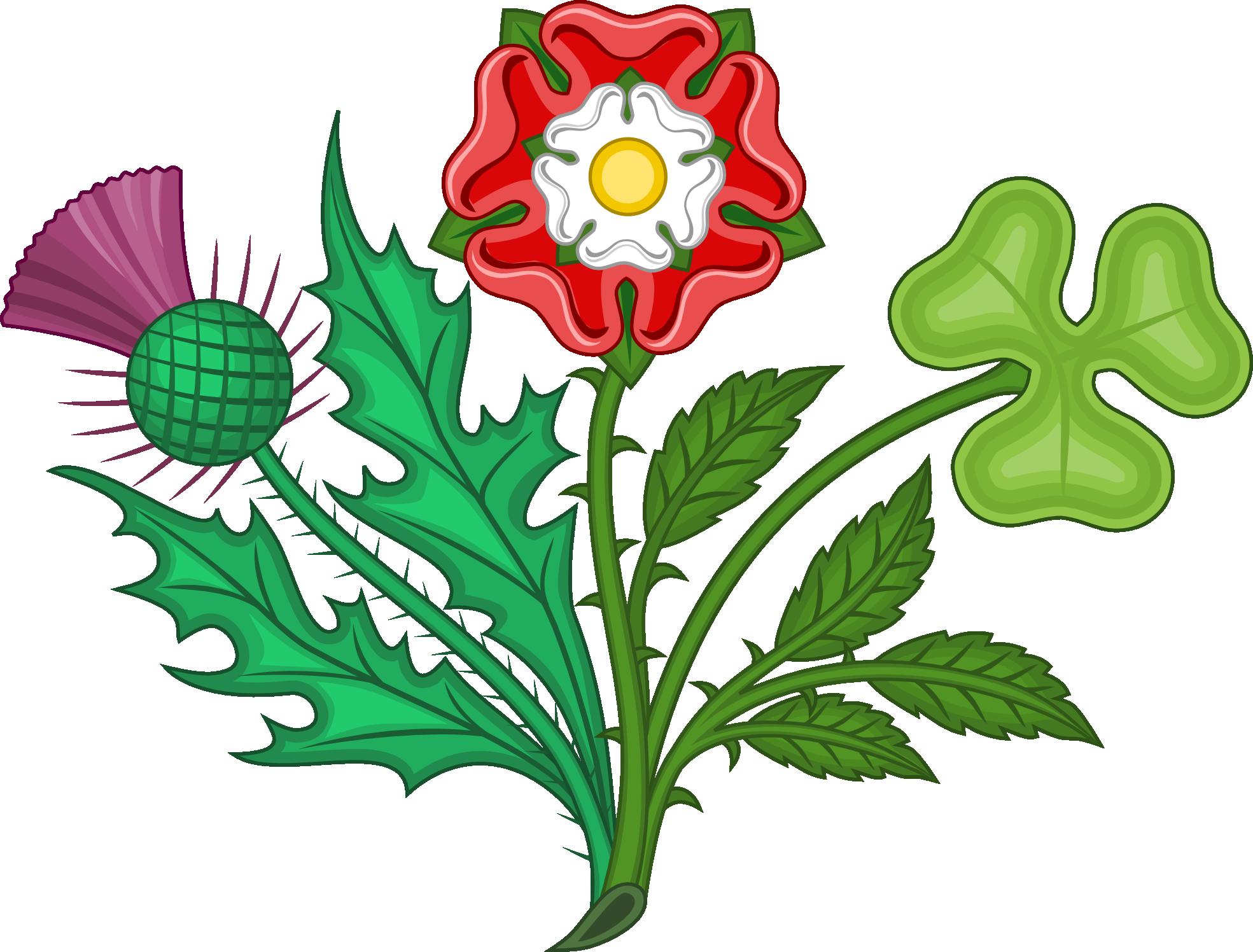 Plant Kingdom Pictures.