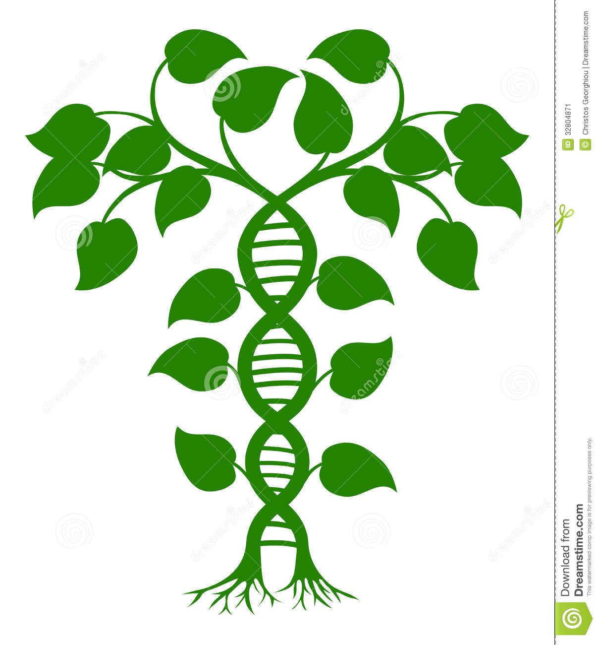 DNA Nature Plant Stock Image.