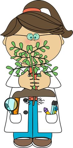Plants clipart nature.