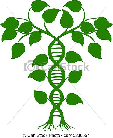 Clipart Vector of DNA nature plant.