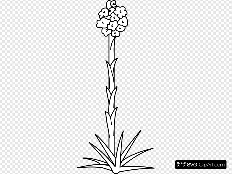 Plant Flower Outline Clip art, Icon and SVG.
