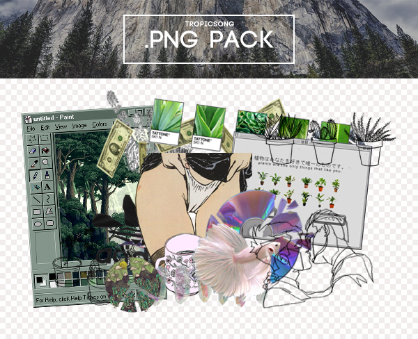 21+ Free Aesthetic PNG packs.