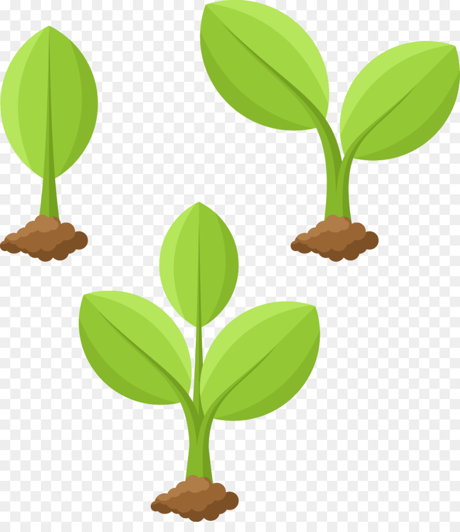 Cartoon Plants Png & Free Cartoon Plants.png Transparent.