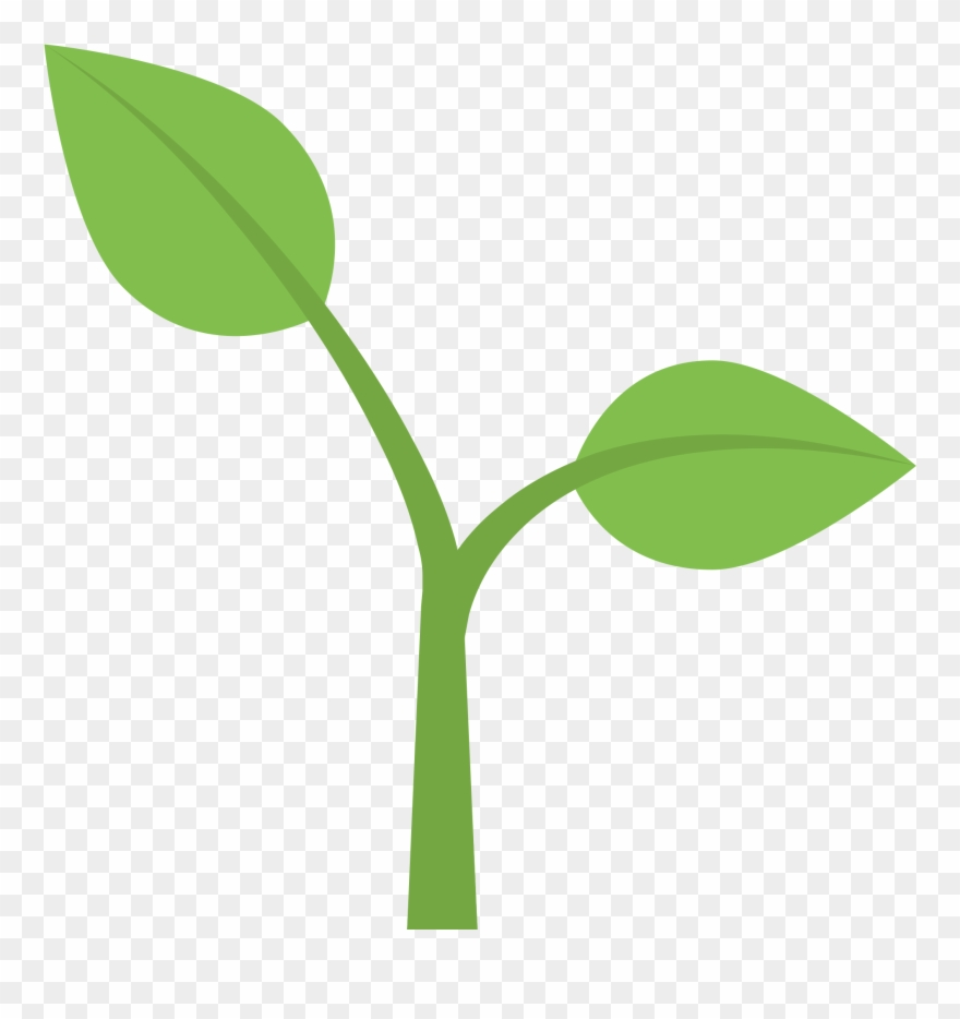 Flower Stem Template 1, Buy Clip Art.