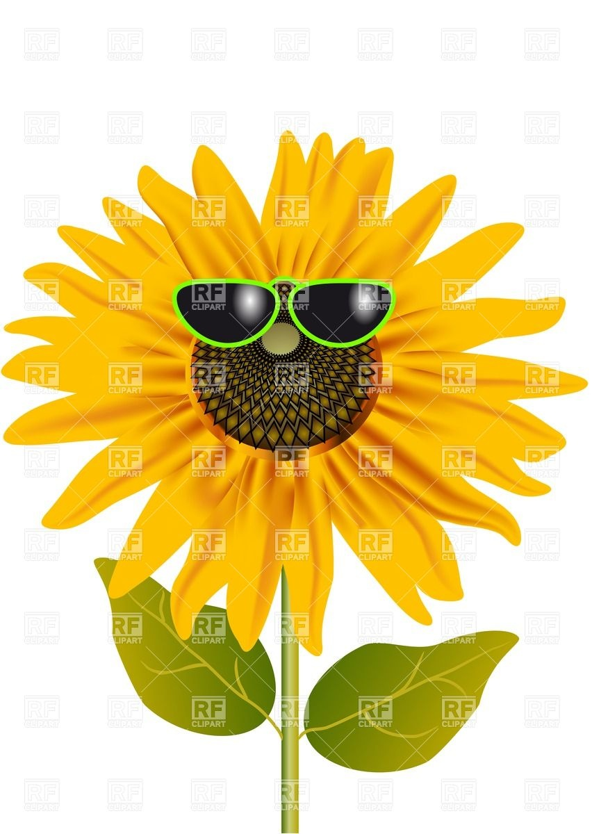 Plant summer clipart - Clipground