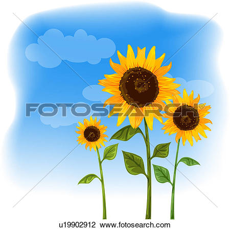 Clip Art of flowers, summer, flower, plants, plant, bloom, season.