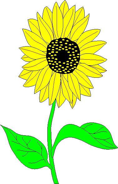 Sunflower Clip Art.