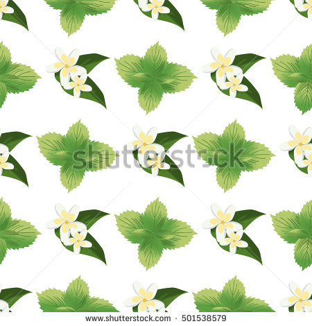 Green Seamless Tea Texture Texture Stock Photos, Royalty.