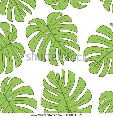 leaf of Monstera deliciosa plant.Vector seamless pattern. Endless.