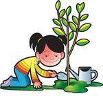 Plant tree clipart #18