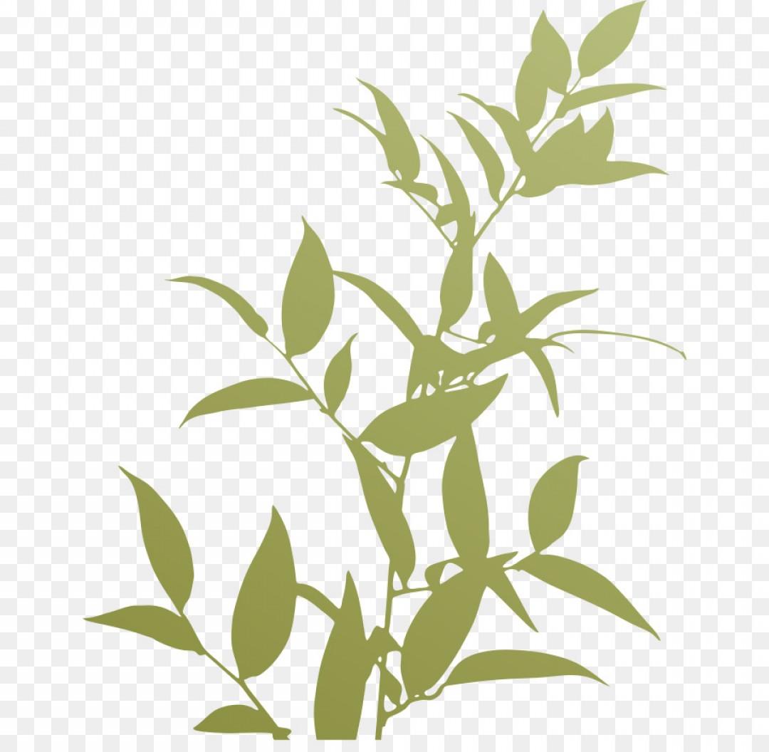 Png Plants Trivia Silhouette Plant Silhouette.