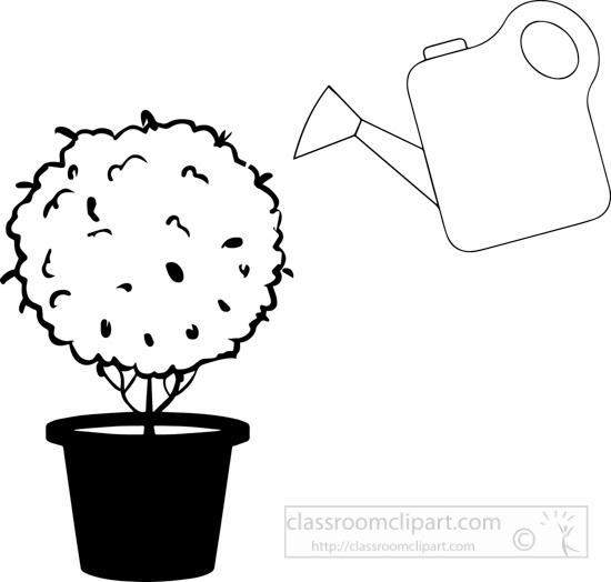 Plants : black.
