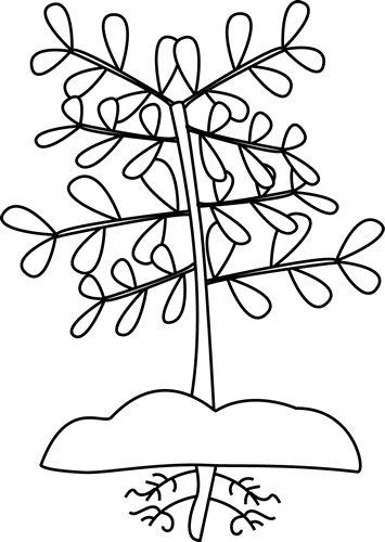 Black and White Plant with Roots Clip Art.